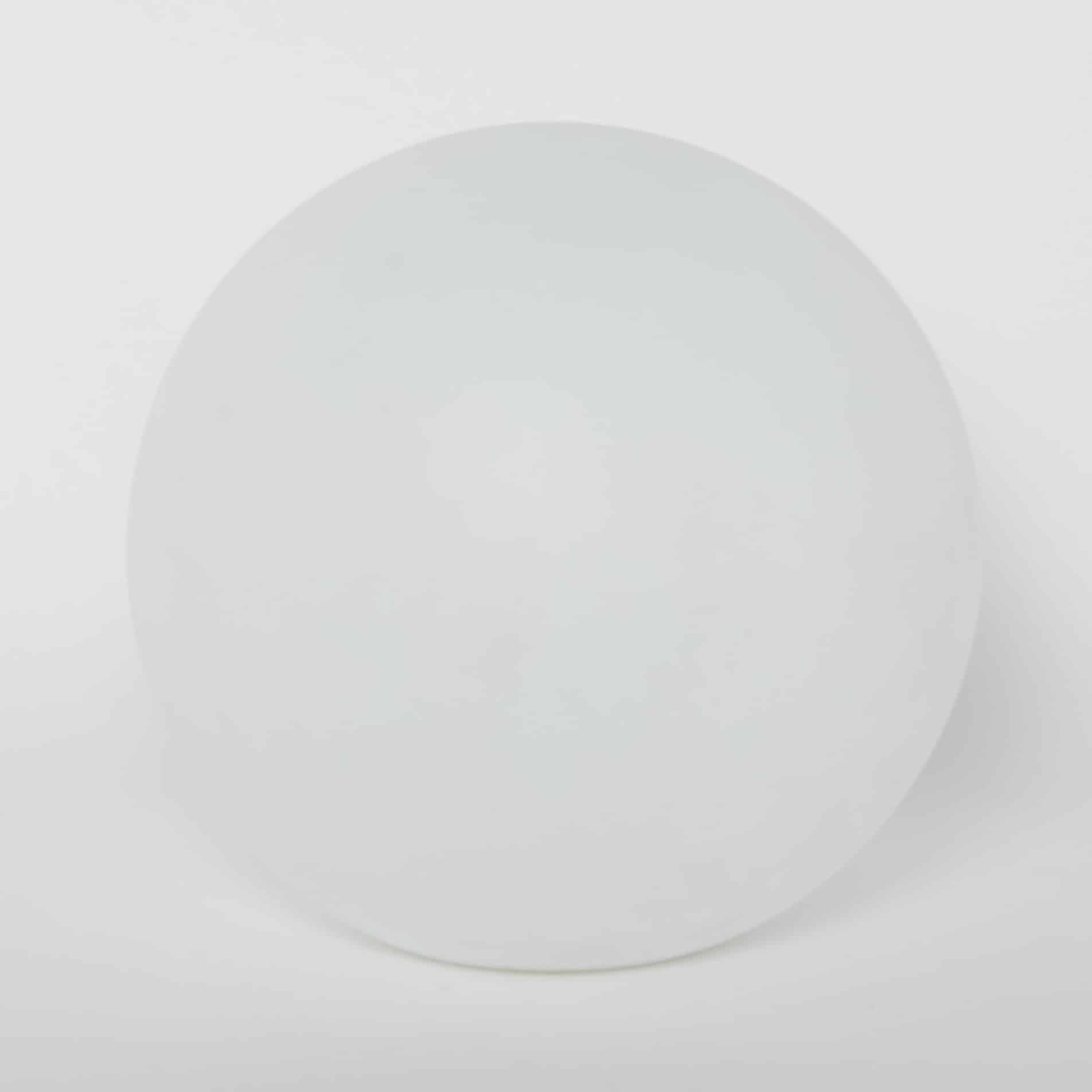 Bollamp 50cm RGBW Oplaadbaar